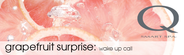 Grapefruit Surprise Sugar Scrub Banner
